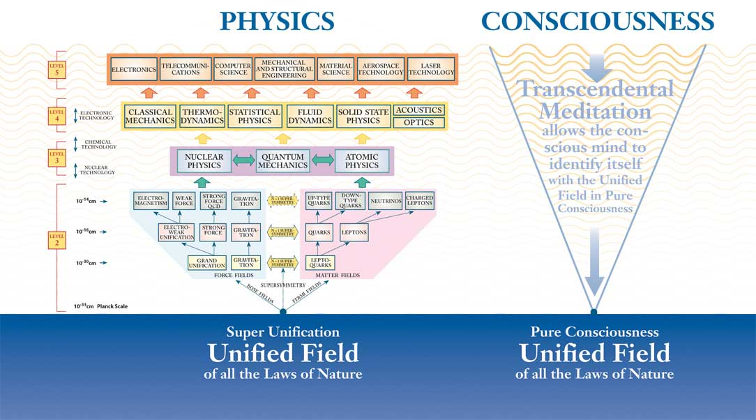 consciousness-unified-field